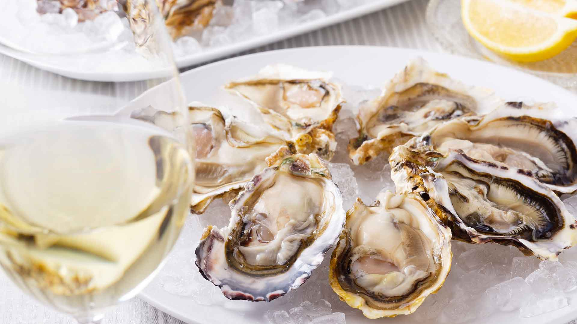 Aw, Shucks: A Hands-On Oyster Primer