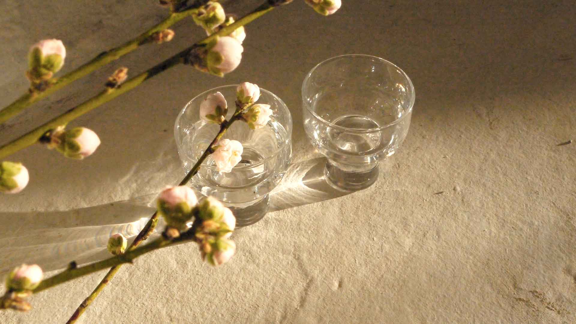 Saké Culture